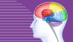 Clinique-chiropratique-Chambly-neurologie-fonctionnelle